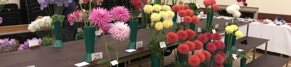 Cupar Flower Show